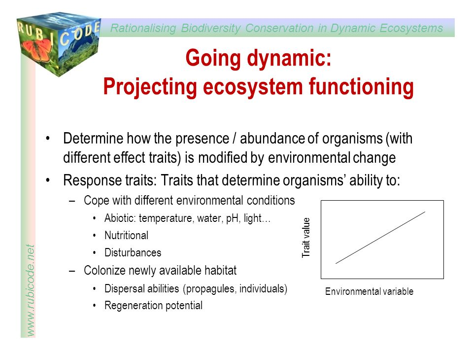 Rationalising Biodiversity Conservation in Dynamic Ecosystems www.rubicode.net Going dynamic: Projecting ecosystem functioning Determine how the prese