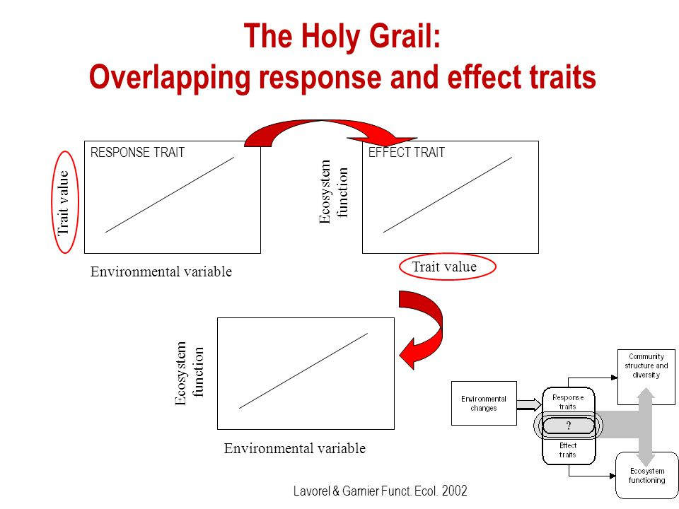 The Holy Grail: Overlapping response and effect traits Environmental variable Ecosystem function Environmental variable Trait value RESPONSE TRAIT Tra