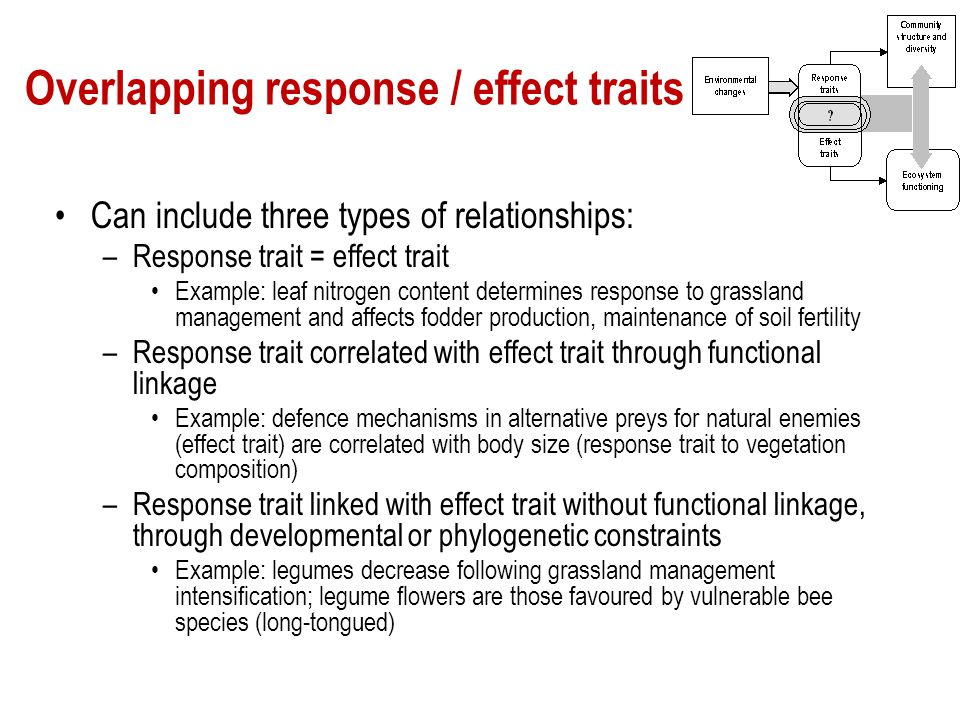 Overlapping response / effect traits Can include three types of relationships: –Response trait = effect trait Example: leaf nitrogen content determine