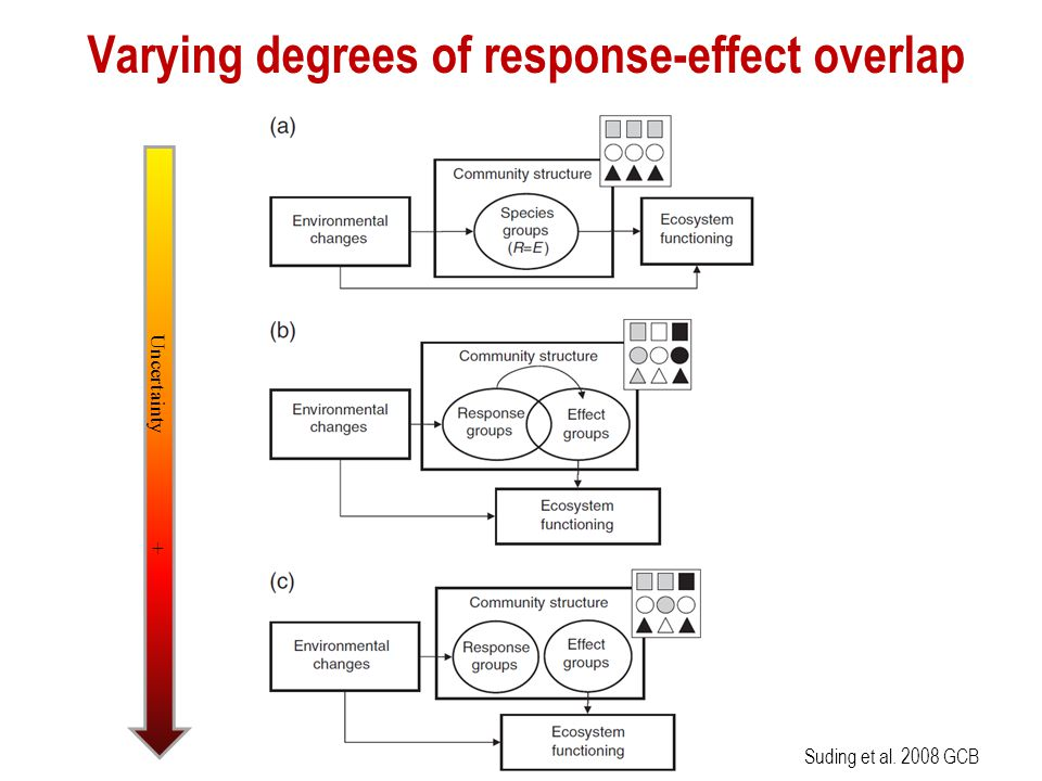 Varying degrees of response-effect overlap Suding et al. 2008 GCB Uncertainty +
