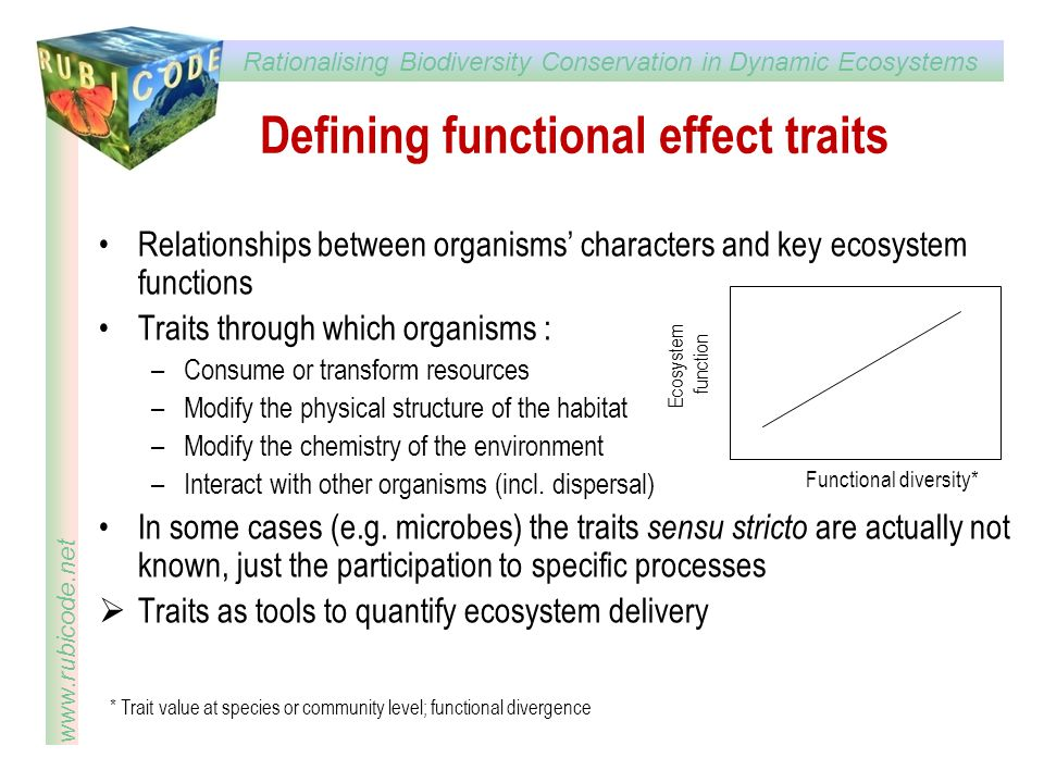 Rationalising Biodiversity Conservation in Dynamic Ecosystems www.rubicode.net Defining functional effect traits Relationships between organisms' char