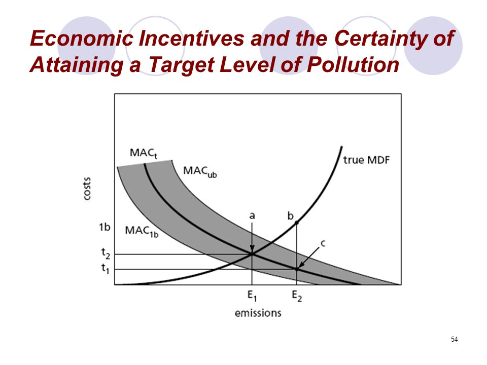 54 Economic Incentives and the Certainty of Attaining a Target Level of Pollution