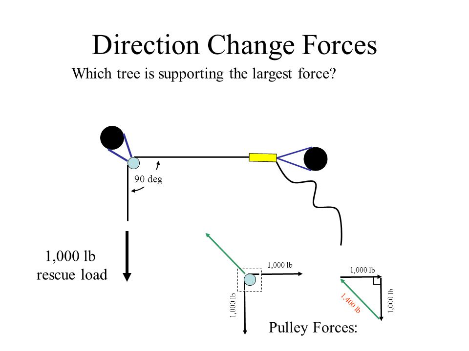 90 deg Direction Change Forces 1,000 lb rescue load Which tree is supporting the largest force.