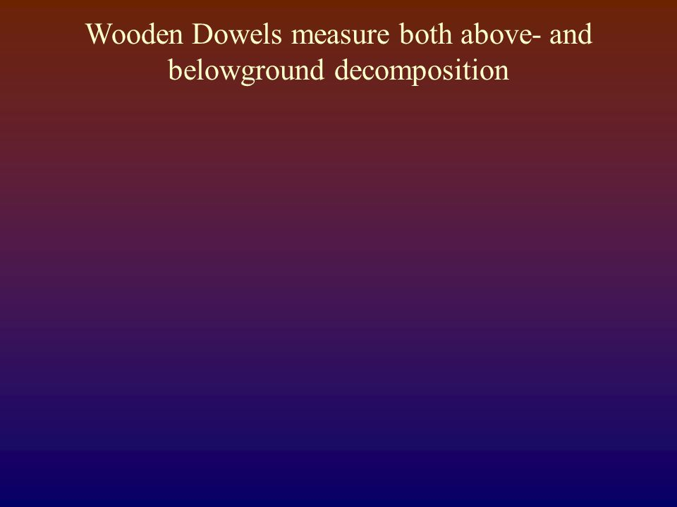 Wooden Dowels measure both above- and belowground decomposition