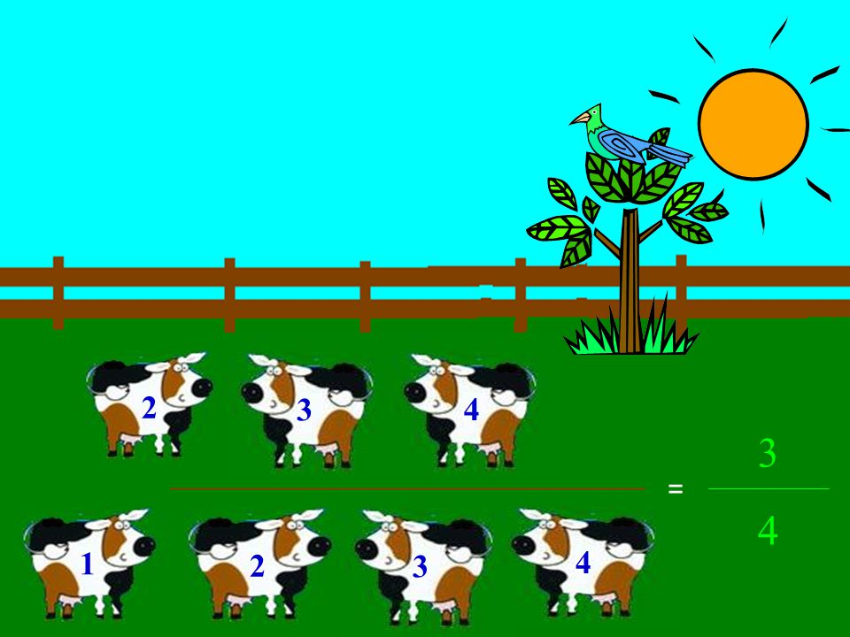 We can rearrange the cows to look like the fraction 3/4. 23 4 1 The bottom of a fraction is called the denominator. Since there are 4 cows total, they