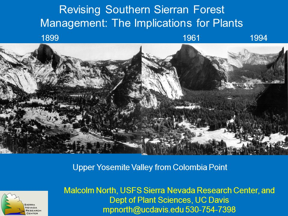 Revising Southern Sierran Forest Management: The Implications for Plants Malcolm North, USFS Sierra Nevada Research Center, and Dept of Plant Sciences, UC Davis mpnorth@ucdavis.edu 530-754-7398 Upper Yosemite Valley from Colombia Point 189919611994