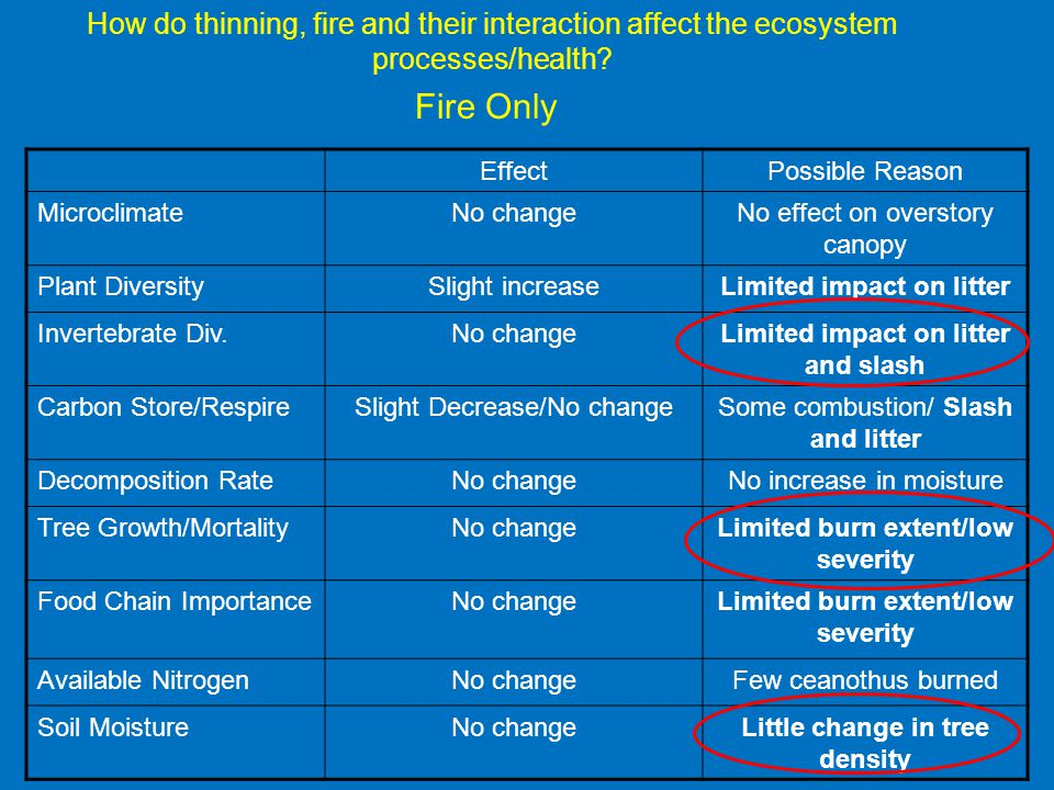 How do thinning, fire and their interaction affect the ecosystem processes/health.
