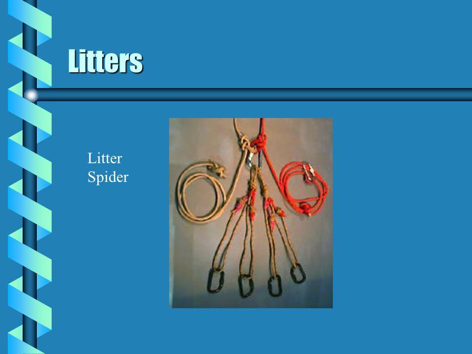 Litters Litter Spider