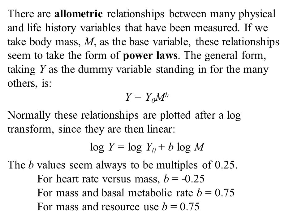 There are allometric relationships between many physical and life history variables that have been measured.