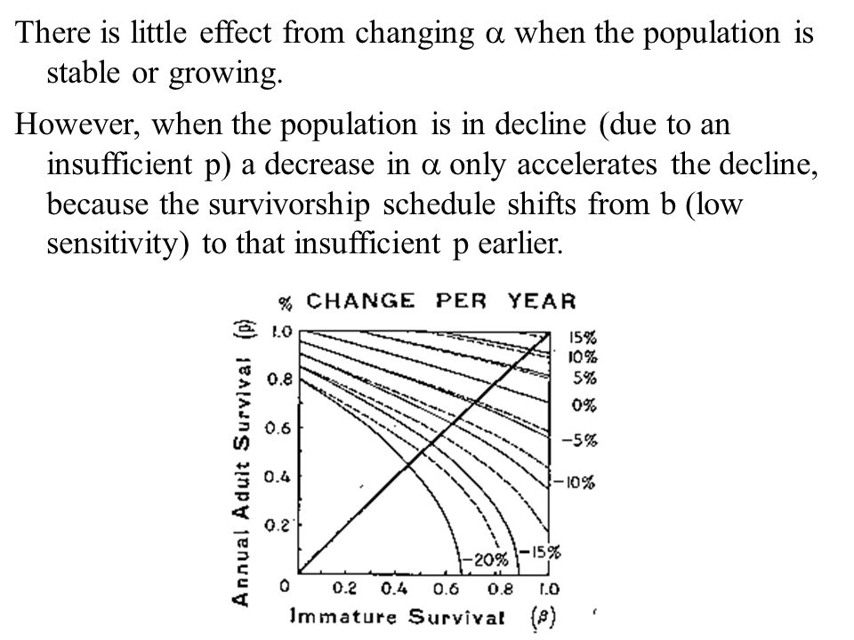 There is little effect from changing  when the population is stable or growing.
