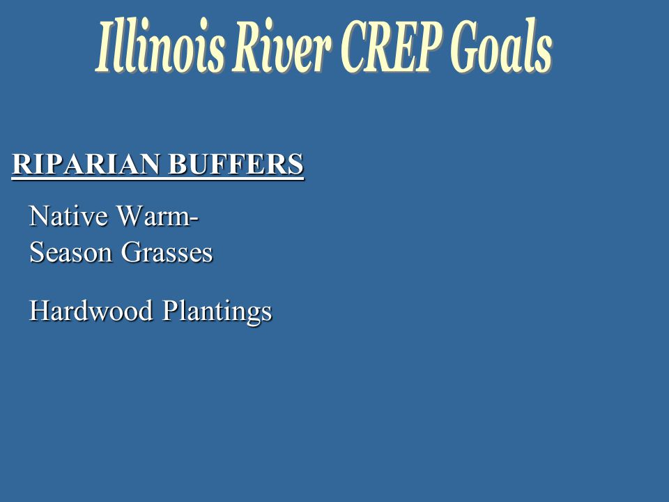 RIPARIAN BUFFERS Native Warm- Season Grasses Hardwood Plantings
