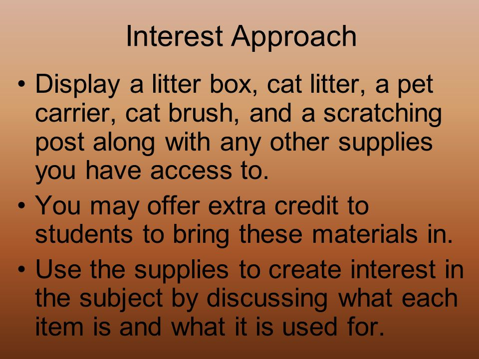 Explain classes and breeds of cats. Learning Target #2