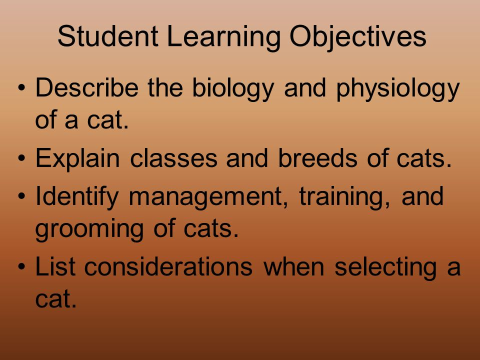 Student Learning Objectives Describe the biology and physiology of a cat.