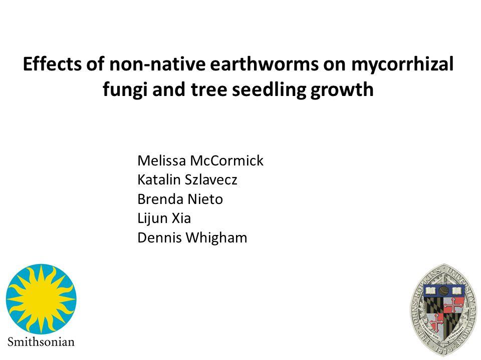 Melissa McCormick Katalin Szlavecz Brenda Nieto Lijun Xia Dennis Whigham Effects of non-native earthworms on mycorrhizal fungi and tree seedling growt