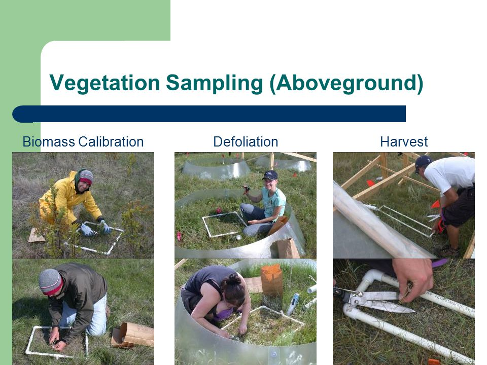 Vegetation Sampling (Aboveground) Biomass CalibrationHarvestDefoliation