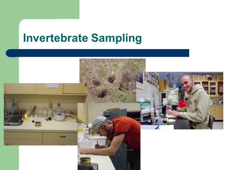 Invertebrate Sampling