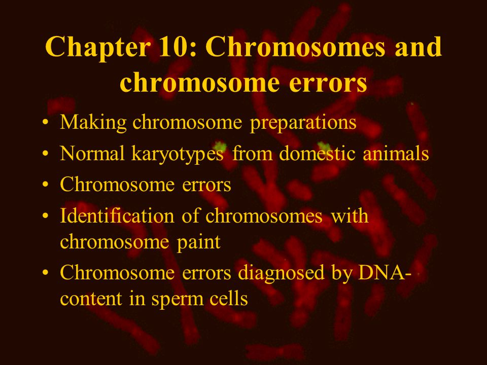 Chapter 10: Chromosomes and chromosome errors Making chromosome preparations Normal karyotypes from domestic animals Chromosome errors Identification of chromosomes with chromosome paint Chromosome errors diagnosed by DNA- content in sperm cells