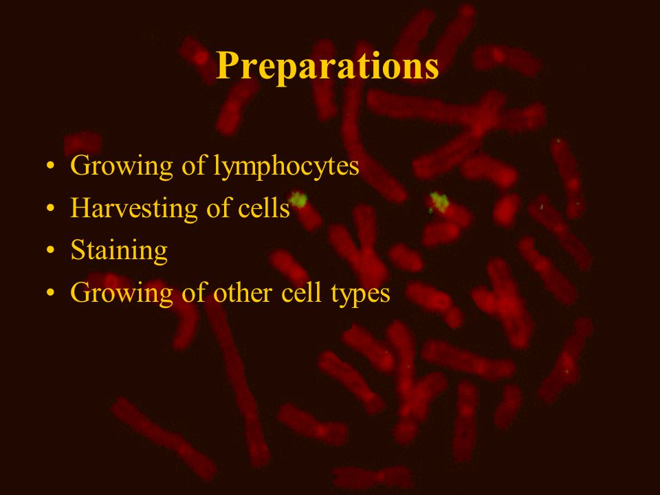 Preparations Growing of lymphocytes Harvesting of cells Staining Growing of other cell types