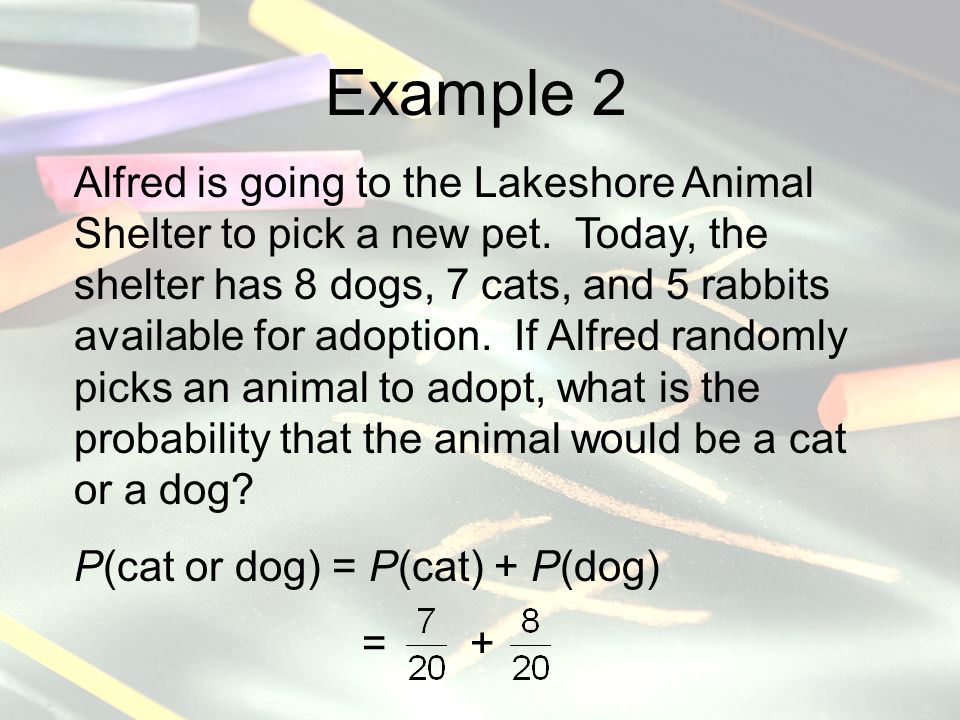 Example 2 Alfred is going to the Lakeshore Animal Shelter to pick a new pet.