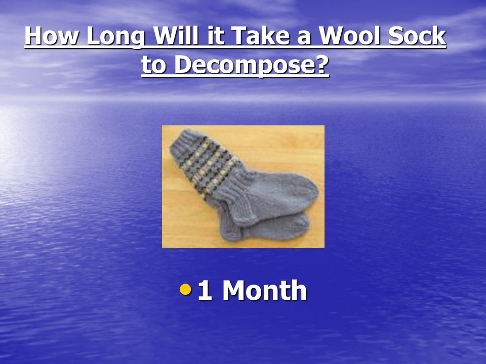 How Long Will it Take a Wool Sock to Decompose? 1 Month 1 Month