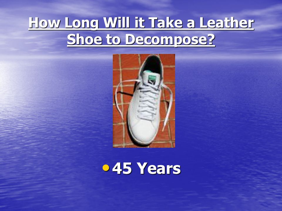 How Long Will it Take a Leather Shoe to Decompose? 45 Years 45 Years