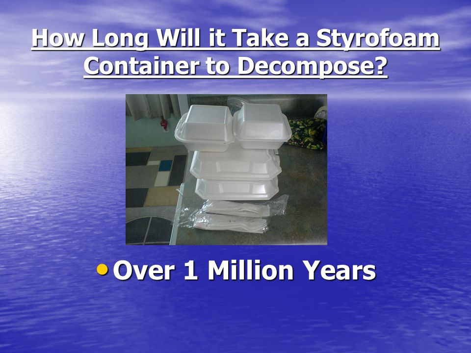 How Long Will it Take a Styrofoam Container to Decompose? Over 1 Million Years