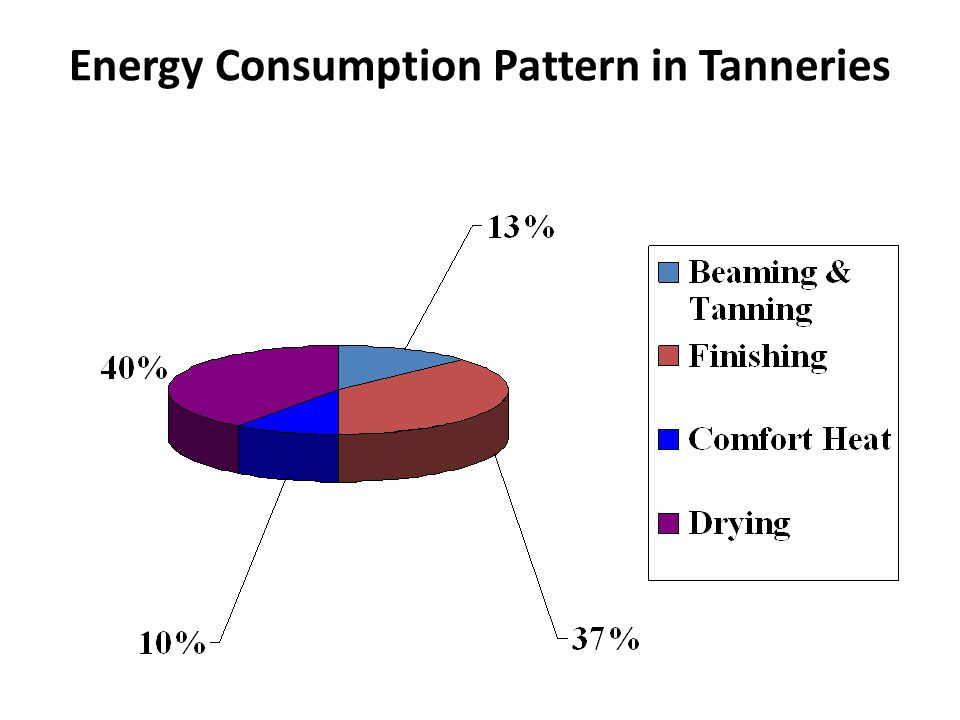 Energy Consumption Pattern in Tanneries