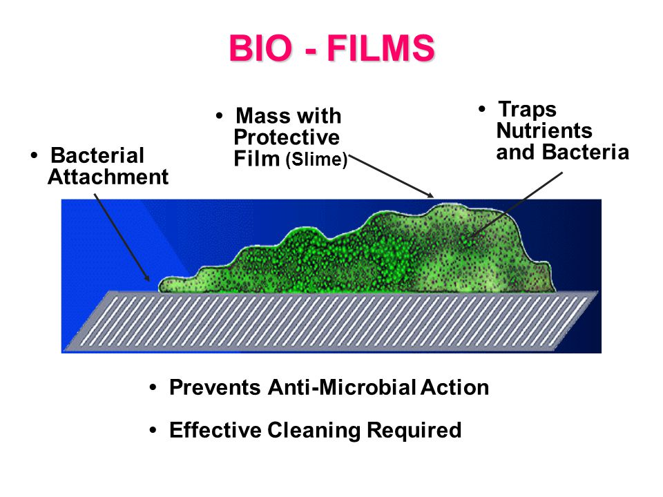 BIO - FILMS Prevents Anti-Microbial Action Effective Cleaning Required Bacterial Attachment Mass with Protective Film (Slime) Traps Nutrients and Bacteria Prevents Anti-Microbial Action Effective Cleaning Required