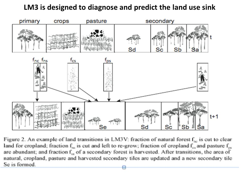 LM3 is designed to diagnose and predict the land use sink