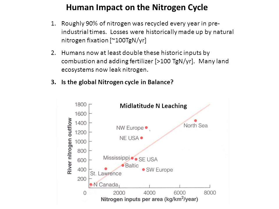 1.Roughly 90% of nitrogen was recycled every year in pre- industrial times.