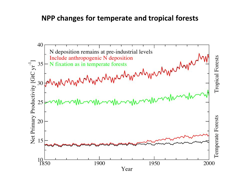NPP changes for temperate and tropical forests