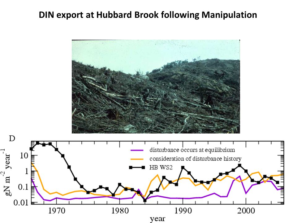 DIN export at Hubbard Brook following Manipulation
