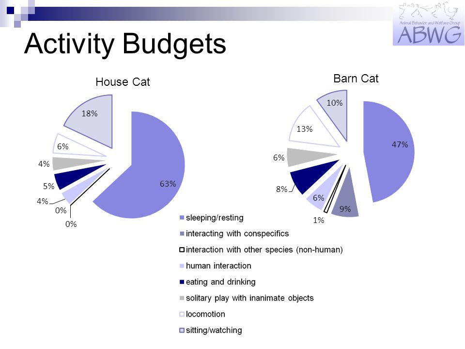 Activity Budgets