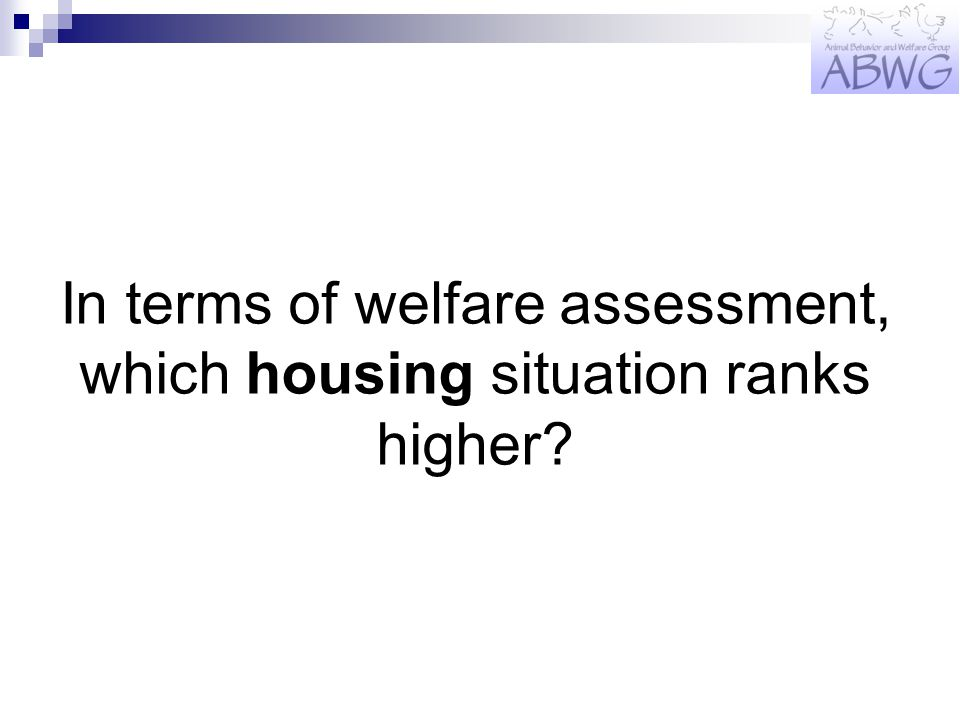 In terms of welfare assessment, which housing situation ranks higher