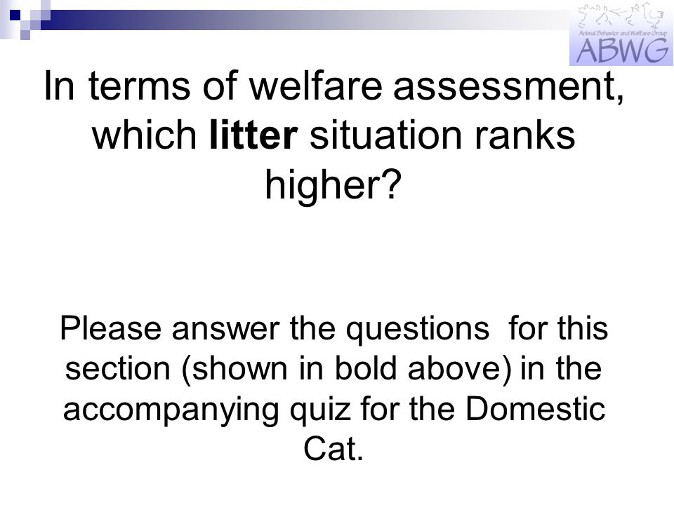 In terms of welfare assessment, which litter situation ranks higher.