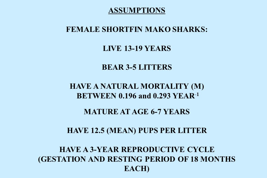 ASSUMPTIONS FEMALE SHORTFIN MAKO SHARKS: LIVE 13-19 YEARS BEAR 3-5 LITTERS HAVE A NATURAL MORTALITY (M) BETWEEN 0.196 and 0.293 YEAR -1 MATURE AT AGE