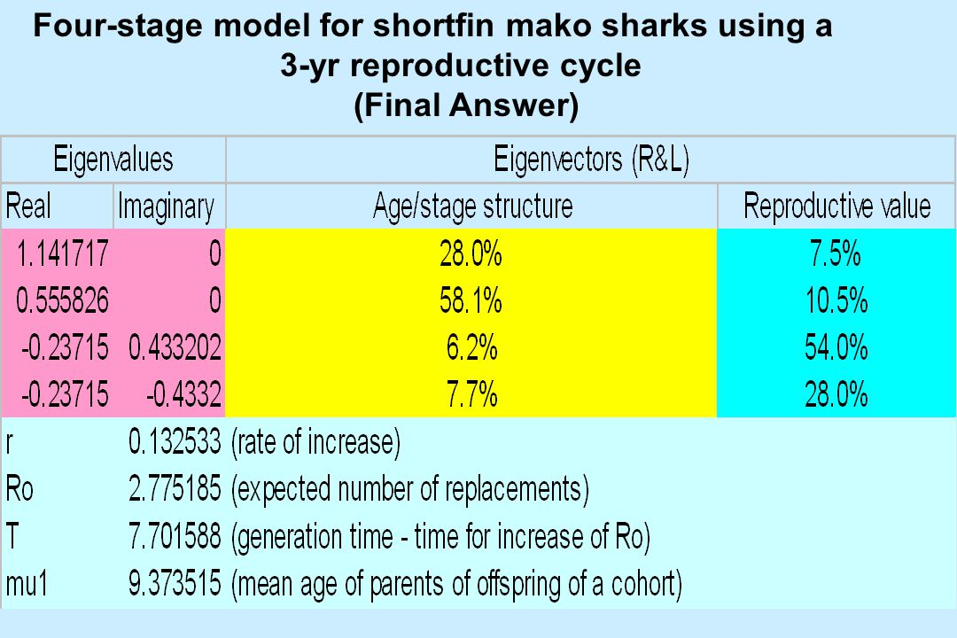 Four-stage model for shortfin mako sharks using a 3-yr reproductive cycle (Final Answer)