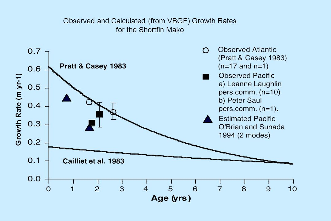 Growth Rate (m yr-1) Observed and Calculated (from VBGF) Growth Rates for the Shortfin Mako