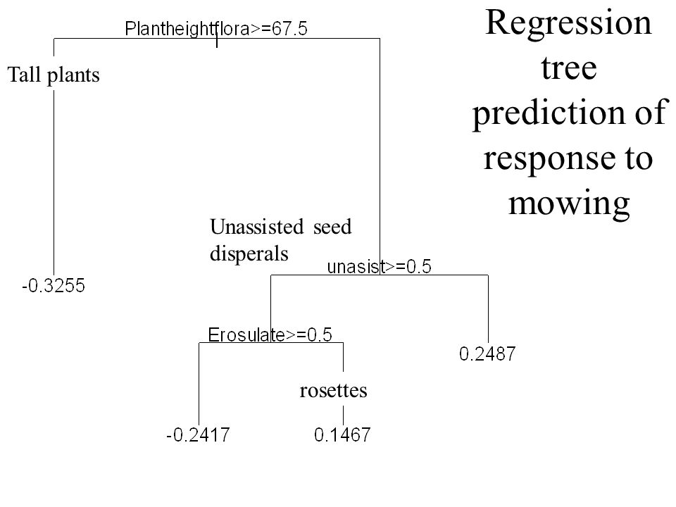 Species response to mowing (RDA score, positive values mean that the species is supported by mowing)