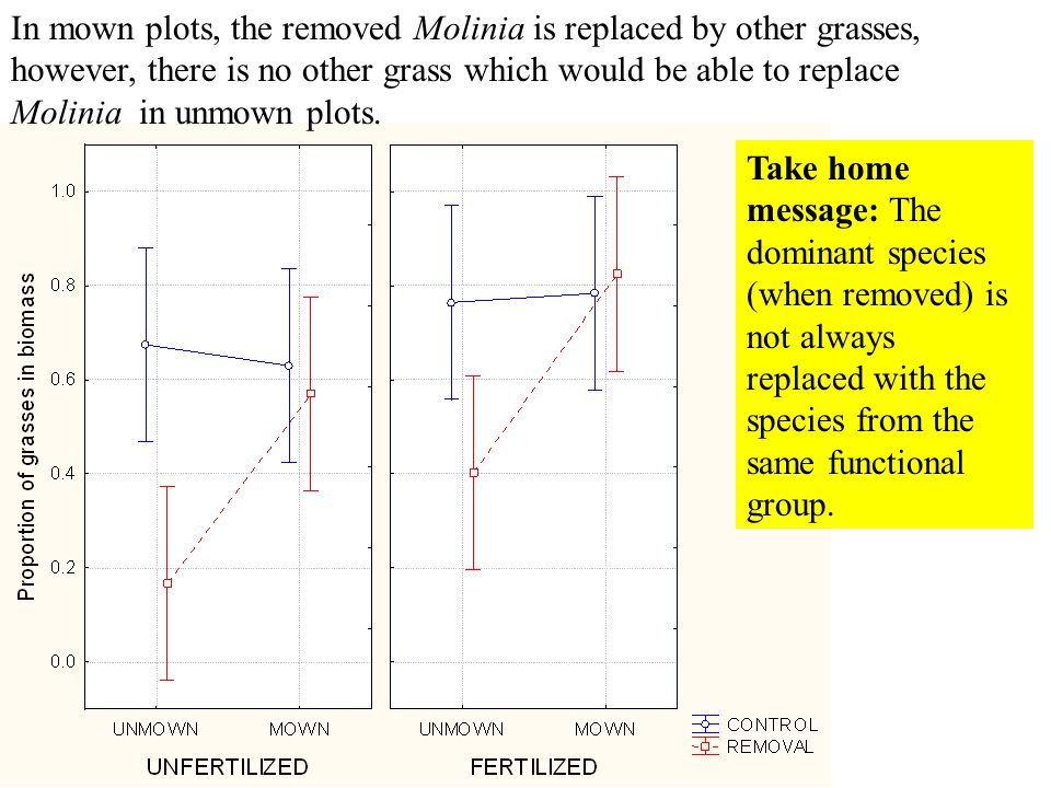 In the presence of Molinia, the peak of biomass is shifted from June to August (and is slightly higher) - only weak statistical support Unfertilized plots only shown The presence of a single species can considerably shift the seasonal biomass dynamics
