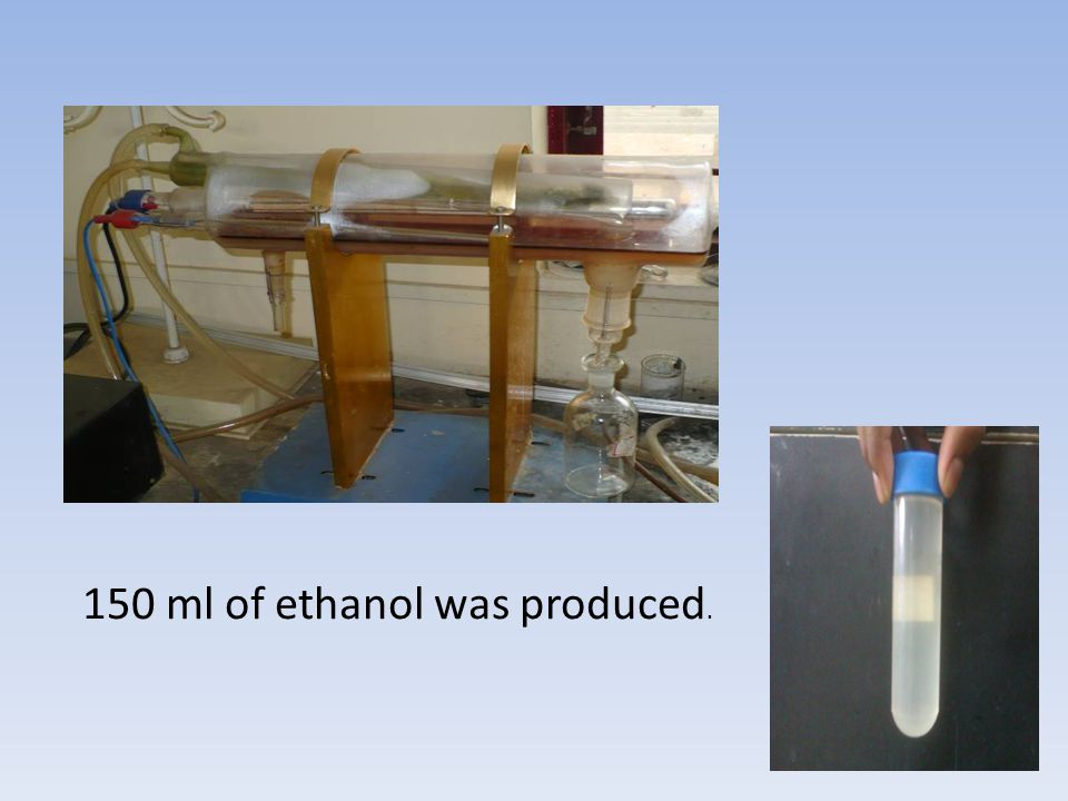 150 ml of ethanol was produced.