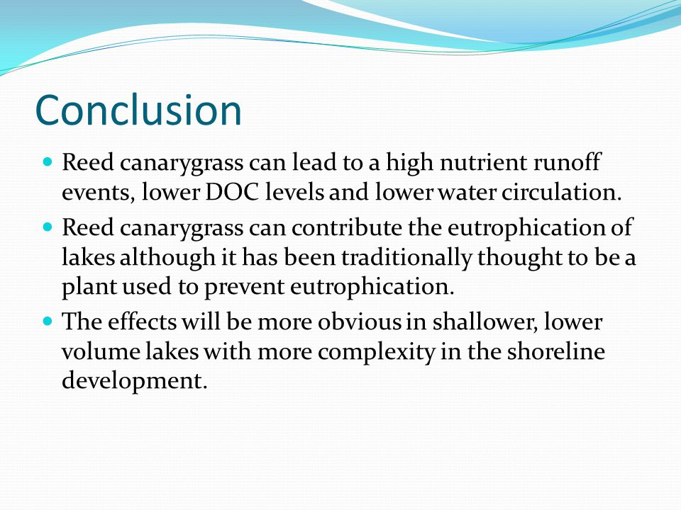 Conclusion Reed canarygrass can lead to a high nutrient runoff events, lower DOC levels and lower water circulation.