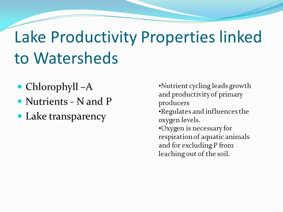 Lake Productivity Properties linked to Watersheds Chlorophyll –A Nutrients - N and P Lake transparency Nutrient cycling leads growth and productivity of primary producers Regulates and influences the oxygen levels.