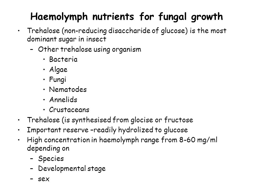 Haemolymph nutrients for fungal growth Trehalose (non-reducing disaccharide of glucose) is the most dominant sugar in insect –Other trehalose using or