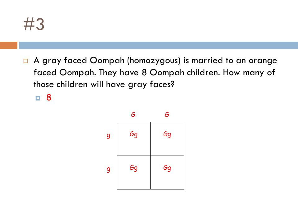 #3  A gray faced Oompah (homozygous) is married to an orange faced Oompah. They have 8 Oompah children. How many of those children will have gray fac