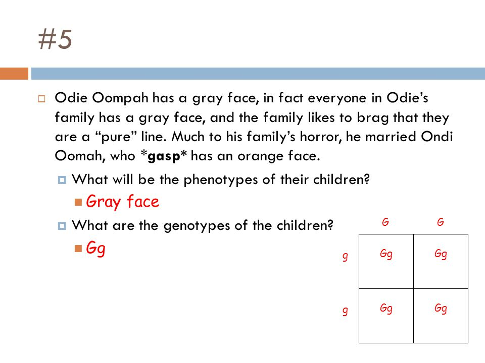 "#5  Odie Oompah has a gray face, in fact everyone in Odie's family has a gray face, and the family likes to brag that they are a ""pure"" line. Much to"