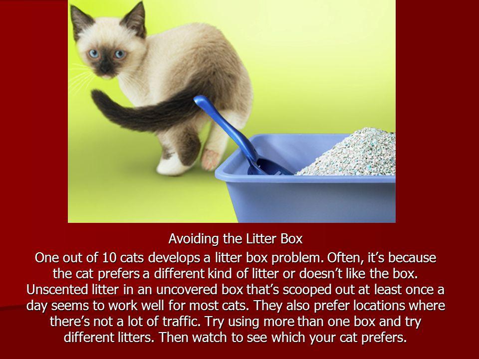 Avoiding the Litter Box One out of 10 cats develops a litter box problem.