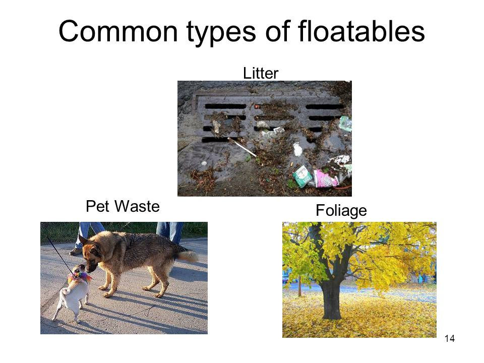 14 Common types of floatables Litter Foliage Pet Waste