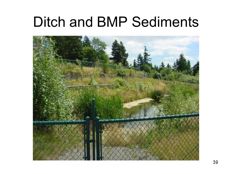 39 Ditch and BMP Sediments