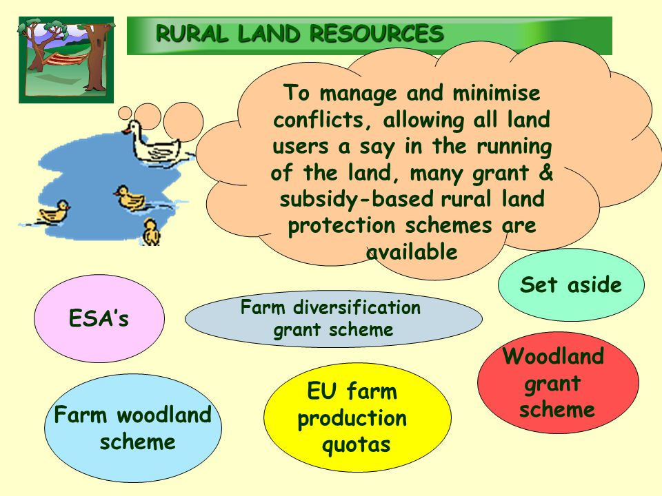 RURALLAND RESOURCES RURAL LAND RESOURCES To manage and minimise conflicts, allowing all land users a say in the running of the land, many grant & subsidy-based rural land protection schemes are available ESA's EU farm production quotas Set aside Farm diversification grant scheme Woodland grant scheme Farm woodland scheme